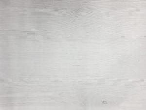 Вяз скандинавский Гомель